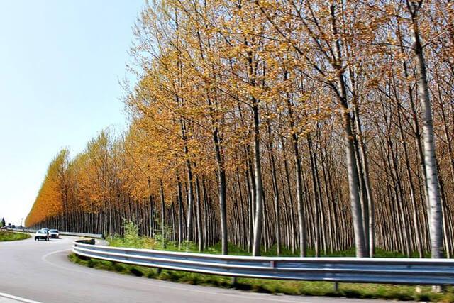 Round 1 Alpe Adria BMX Championship 2014